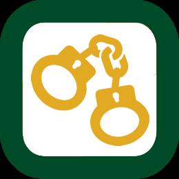 Criminology Diploma icon